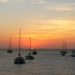 Paella, hierbas y espadrillas – I love Formentera – Summer tips