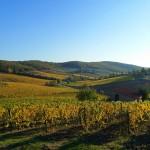 Domenica a spasso nel Chianti – Volpaia – Toscana