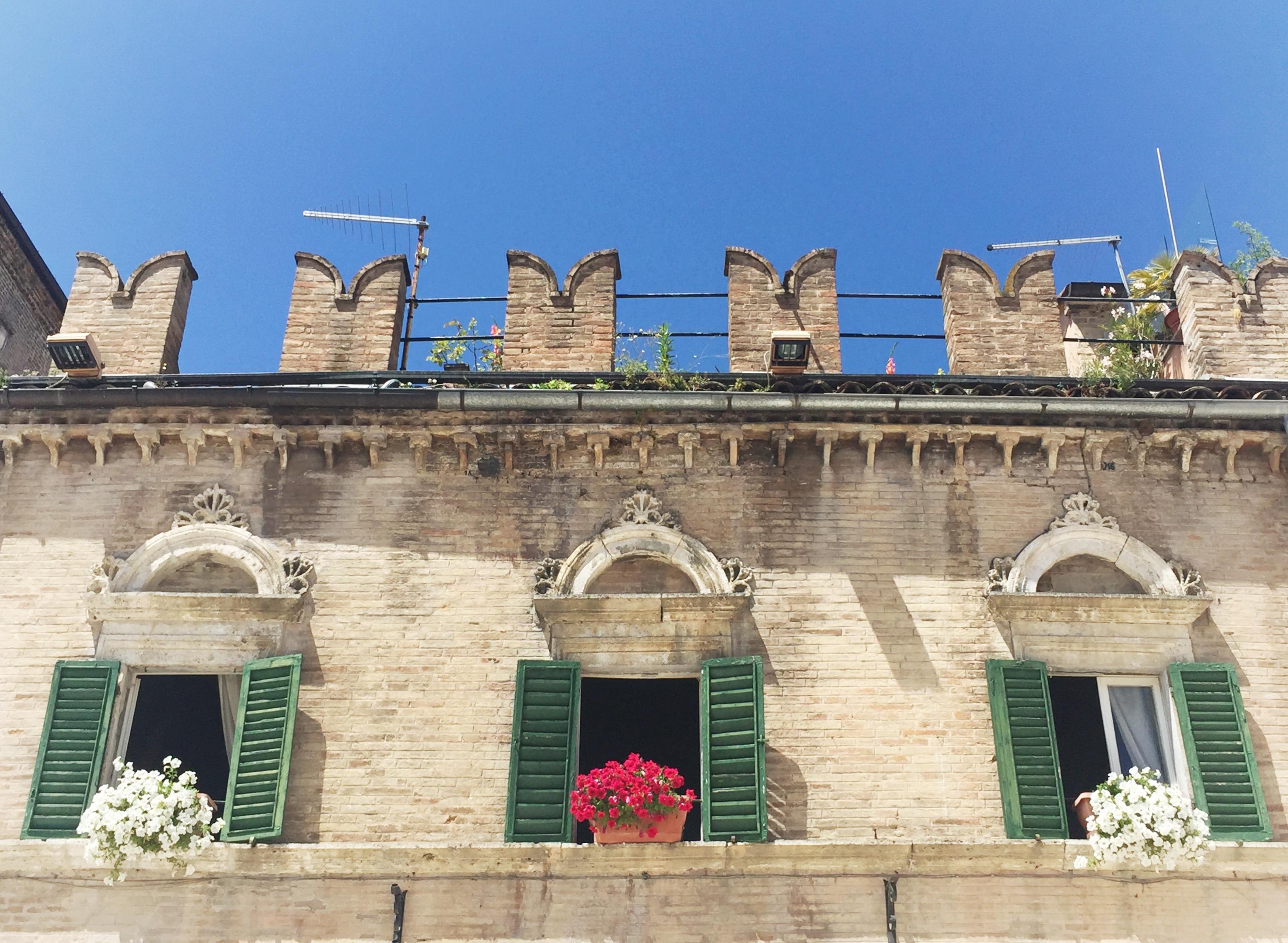 ascoli piceno cougars personals Find property for sale in le marche italy, including farmhouses, villas, apartments and country houses ancona, ascoli piceno, fermo, macerata, pesaro – urbino.