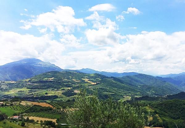Agriturismo Tenuta Borgio - Venarotta - Ascoli Piceno - Marche