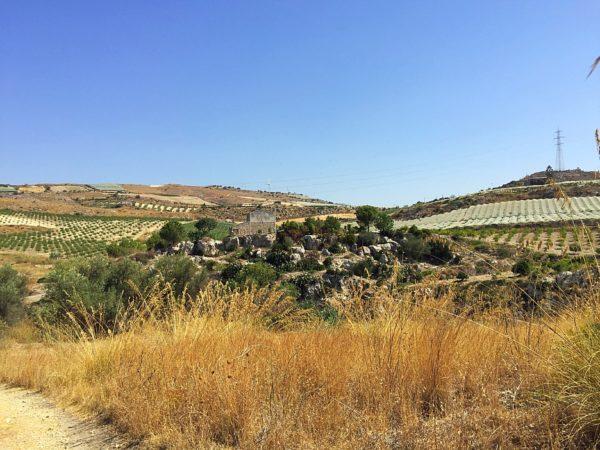 Countryside tour @ Mandranova - Licata - Sicily