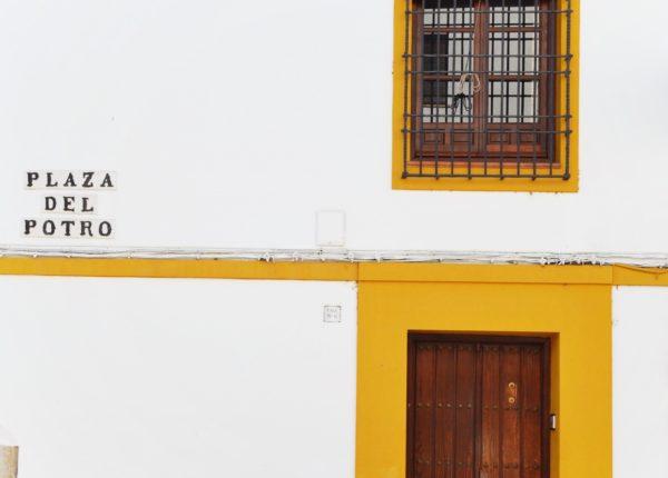 Cordoba - Plaza del Potro