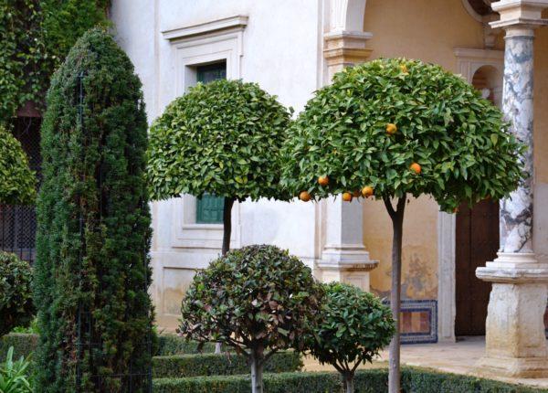 Sevilla - Casa de Pilatos