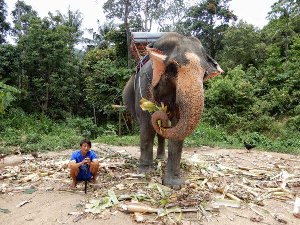 Thailand - Kho Phangan -Jungle Trip