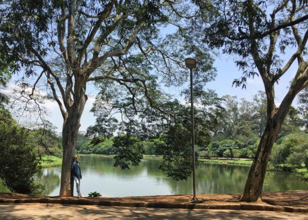 Parque Ibirapuera - Sao Paulo - Brasil