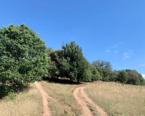 Parco della Caffarella - Roma